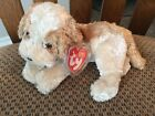 "TY Beanie Baby ""BANJO"" the Dog 2004 - 7 inches"
