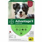Advantage II Flea Control for Large Dogs 21 55 lbs 6 Month
