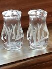 Small 2 Pair Crystal Etched Salt  Pepper Shakers Glass Hand Blown