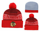 Chicago Blackhawks NHL Hockey Beanie Cap Knit Warm Winter Pom Hat Fleece lined