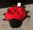 1993 1995 Lucky The Lady Bug Ty Beanie Baby Original Collectible With Tag Errors