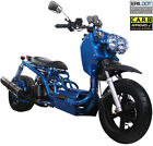 2020 ICE BEAR MADDOG 49cc Full Size Motor Bike Gas Scooter Moped 50 Street Legal