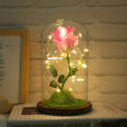 BeautyThe Beast Simulation Rose Glass Cover LED Micro Landscape w String Light