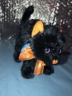 Ty Beanie Baby 2.0~ SCAREDY the Black Cat 2007