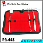 Dental Tooth Cleaning Kit Dentist Scraper Pick Tool Calculus Plaque Floss Pick