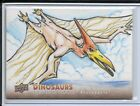 2015 Upper Deck Dinosaurs Trading Cards 11