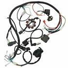 Complete Electric Wiring Harness For ATV QUAD 150 200 250cc Stator CDI go kart
