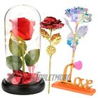 US Rose Flower In Dome Glass LED Night Light Valentines Day Xmas Decor Gift