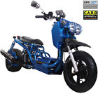 The Original 2020 ICE BEAR MADDOG 49cc Full Size Motor Bike Gas Scooter Moped 50