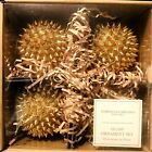 Christian Siriano Christmas Gold Glass Ball Ornaments Spikes Stud 4 Set 4 NIB