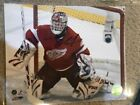 Dominik Hasek Detroit Red Wings IP Autograph Auto Signed 8X10 Color Photo HOF
