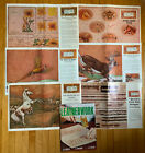 Vintage 6 Doodle Pages Assorted Leather Craftool Patterns + Leatherwork Book