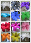 Wholesale beautiful ostrich feathers 35 40 cm 14 16 inches in various colors