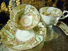 ANTIQUE TEA CUP AND SAUCER TRIO FEATHERS ON QUAKER GREY BANDS HP TULIPS  c1830
