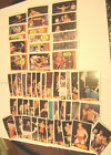 WWF PRO WRESTLING TITAN SPORTS SET OF 53 TRADING CARDS DATED 1985