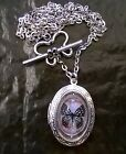 Glass butterfly Antique silver plated large oval locket necklace  holds 2 pics