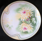 Handpainted Coronet Limoges Plate Yellow and Green Signed Albert