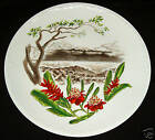 1950's HAWAII WEDGWOOD PORCELAIN PLATE