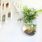 Wall Mount Hanging Fish Bubble Aquarium Bowl Tank NewFree Shipping