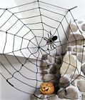 5ft Rope Spider Web