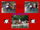 BIG BROWN Horse Racing TRIPLE CROWN Near Miss 8 x 10 Collage Photo