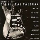 Tribute to Stevie Ray Vaughan by Various Artists