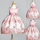 Dusty Rose Floral Satin Embroidery Dress ALL SIZES Wedding Flower Girl 09