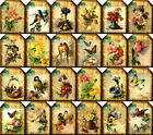 24 FLOWER BIRD BUTTERFLY VINTAGE STYLE 155 LB SCRAPBOOK PAPER CRAFT CARD TAGS