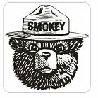 Forest Service Smokey The Bear Sticker M146 YOU CHOOSE SIZE