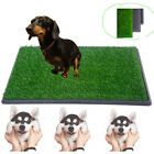 Indoor Puppy Pet Dog Potty Training Pee Pad Mat Grass House Toilet 30x20