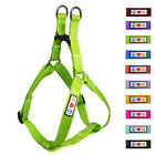 Pet Soft Adjustable Reflective Puppy Dog Harness by Pawtitas