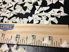 Great Lot 100 1 2 to 9 16 White Tip UPPER shark Teeth craft jewelry weapon