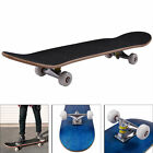 Blank Complete Skateboard 775 Mapel wood Stained Black Ready to ride Blue