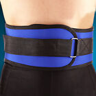 Black Blue Weight Lifting Belt Gym Back Support Power Training Work Abs