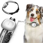 New WIFI GPS GSM Anti-Lost Real Time Mini Waterproof Pet Dog Tracker EY6E01