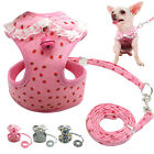 Mesh Padded Dog Harness and Leads Pet Puppy Leash Vest  Bell Chihuahua 4 Sizes