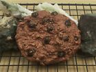 Faux Food Plastic GOLD CHOCOLATE CHIP COOKIE Replica Imitation Decor Stage Prop