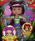Plum Puddin Country Fun Doll + Accessories Strawberry Shortcake 4 and Up RARE!!