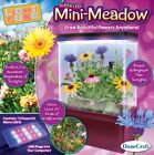 NEW Dunecraft Mini Meadow Science Kit FREE SHIPPING