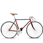 Retro Racing Bike Fixed Gear Bike Anyway and Hub Plating Frame