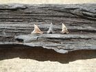 Three Hemipristis serra shark Teeth from Virginia swam with the megalodon