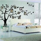 Family Tree Wall Decal Mural Sticker DIY Art Removable Home Office Xmas Decor