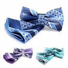 Mens Dotted Bayadere Stripes  Paisley Banded Bow Tie with Matching BTH170629