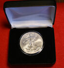 2002 AMERICAN SILVER EAGLE w leatherette case 1 oz 999 BU COLLECTOR COIN GIFT
