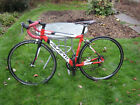 Adult mens red and white Avanti Giro road bicycle