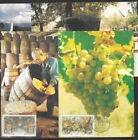 South Africa 1987 Paarl / Wine set of 4 maxi cards