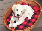 "SANDICAST  FULL SIZED 17"" x 10""  Labrador Puppy full sized with basket"