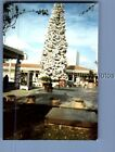 FOUND COLOR PHOTO J_2913 VIEW OF TALL WHITE CHRISTMAD TREE