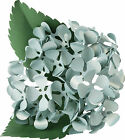 Fiskars Lia Griffith Lever Punch Large Hydrangea