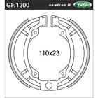 Rear Brake Shoes Fit TGB 203 50	2005 2006 2007 S4S